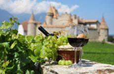 Vini francesi: la guida definitiva